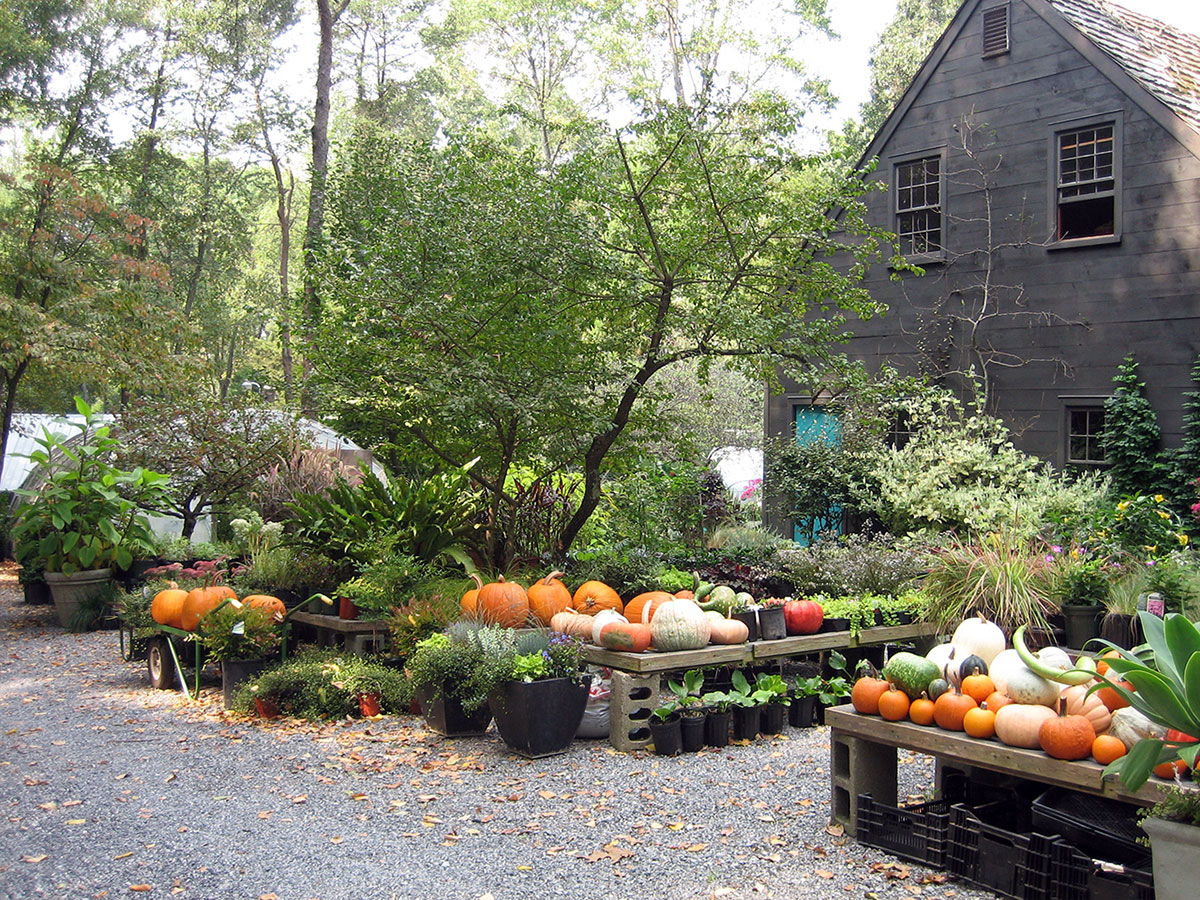 autumn_garden_center
