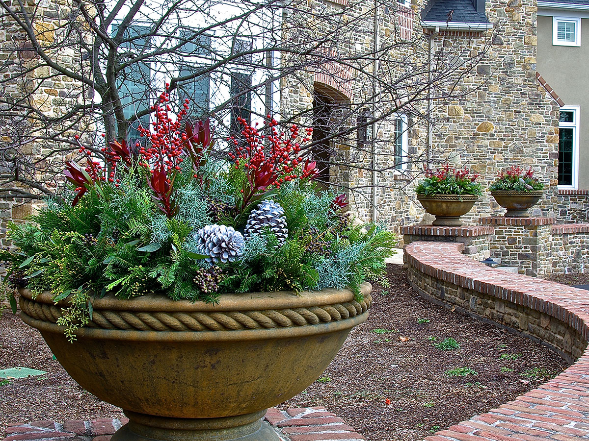 containers_evergreen_bowl_stone_house
